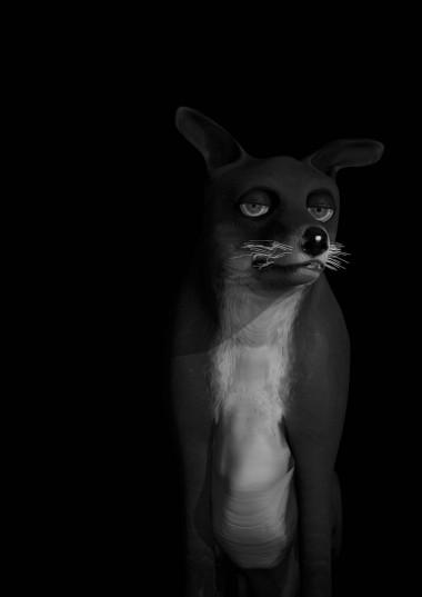 MR_Fox_hel_c_9_127_0714_M