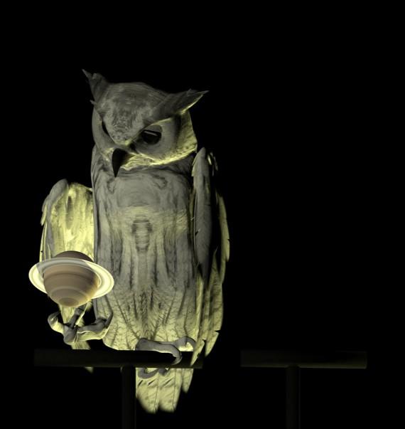 owl_516_X2_06_L_M