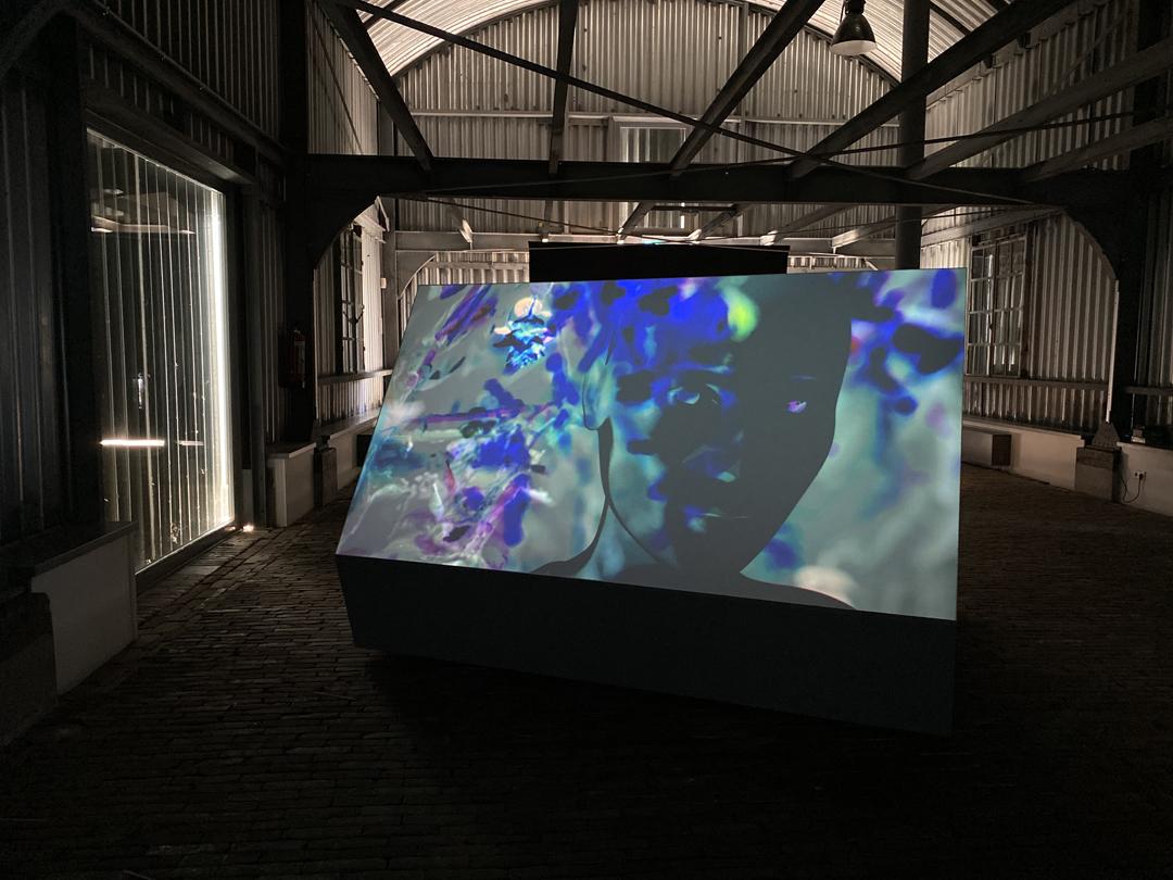 Messages, Ann Lislegaard, Kunstfort bij Viufhuizen, 2020